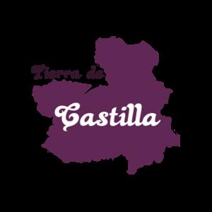 VT CASTILLA